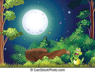 A forest with a smiling frog near the rock