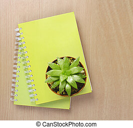 Top view of a Cactus on Booklet