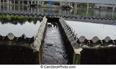 drinkable water treatment - Closeup of last sewage water...