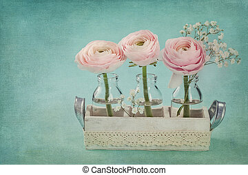 Pink ranunculus flowers on a blue background