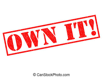 OWN IT red Rubber Stamp over a white background