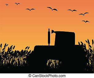Tractor - A tractor in silhouette standing in a field of...