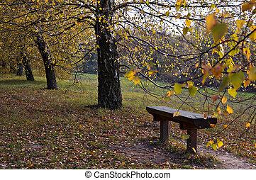 Autumn pew - Pew in the parkland