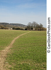 Foot path - A view of a footpath through a field