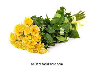 Group of fresh yellow roses isolated on a white background
