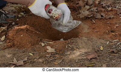 Somebody hides a jar of jewelry under a ground