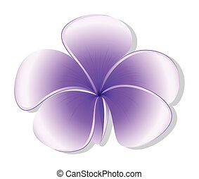 A violet flower - Illustration of a violet flower on a white...