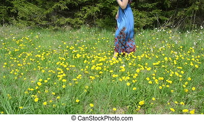 woman gather flowers - Woman in long blue dress pick collect...