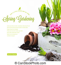 jardinagem, conceito