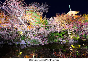 Japanese temple with sakura at night