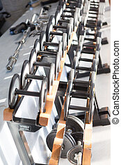 Dumb bells lined up in a fitness studio. picture is short...