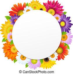 Colorful Gerbers Flower Banner