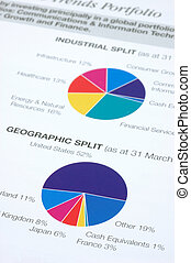Financial pie chart on industrial and geographic split