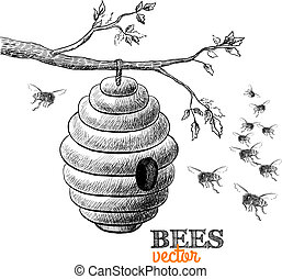 Honey bees and hive on tree branch isolated vector...
