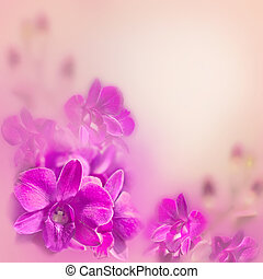 Abstract romantic floral background with pink tropical...