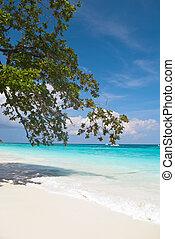 White crystal beach at Tachai Island - White crystal beach...