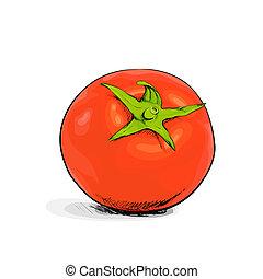 Tomato - red tomato on white backgound
