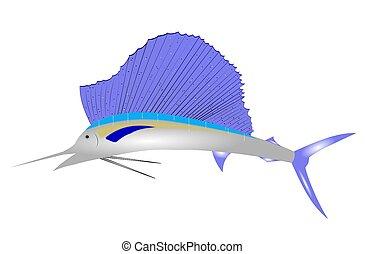 sailfish clip art over white