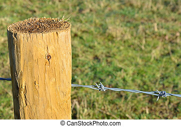 Barbed wire on post