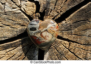 heart - A heart of gem on a tree trunk