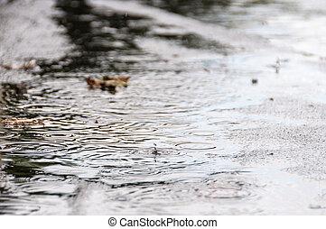 Rain falling on a puddle