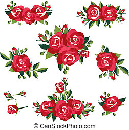 roses on white background - inflorescence or bouquets of...