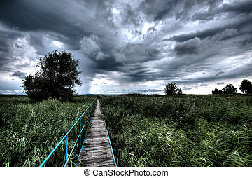 Balaton - a pier going through in reeds
