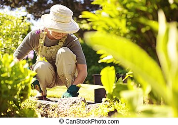 Senior female gardener working in her garden - Senior woman...