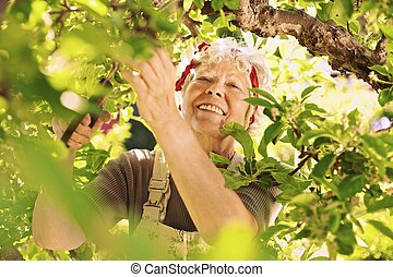 Senior female gardener working in her farm smiling - Happy...
