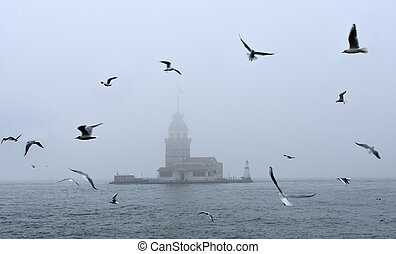Maidens Tower in foggy morning Istanbul, Turkey - bird and...