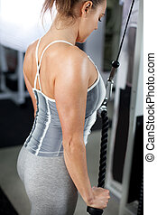 Triceps - Attractive young woman doing triceps exercises in...