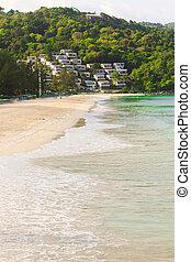 外來, 水, 綠松石, 海灘, 熱帶