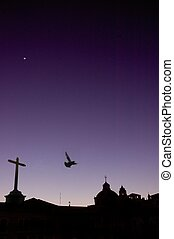 Quito - landscape, bird, night, purple, cross, church,...