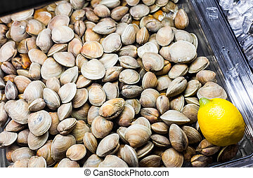 Clams in the Fish Counter of a Restaurant - Clams in the...