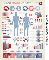 Medical infographics elements Human body with internal...