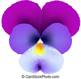 Pansies, With Gradient Mesh, Vector Illustration