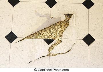 Torn Up Linoleum Floor - Old white and black speckled...