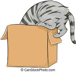 Cat Playing with Box