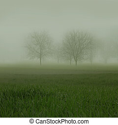 Leafless trees barely seen on misty grassy landscape
