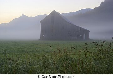 Old barn and a misty morning - A misty morning greets an old...
