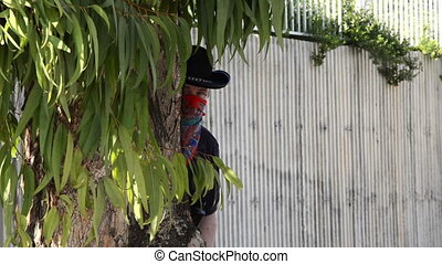 Cowboy ambushes behind eucalyptus - Cowboy in black hat and...