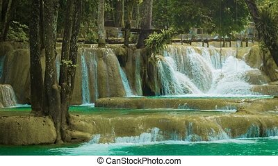 Forest Kouang Si Waterfall, Laos, Luang Prabang - Video...