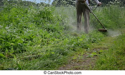 gardener cut high grass - gardener man cut high grass near...
