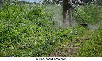 gardener cut high grass - gardener man cut high grass near...