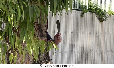Robber ambushes behind eucalyptus - A robber in black...