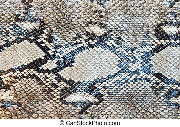 Snake skin pattern texture background