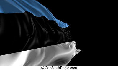Flag of Estonia - Beautiful 3d animation of Estonia flag...