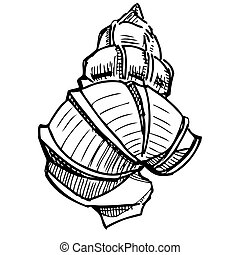 Sea shell isolated on white Sketch vector illustration