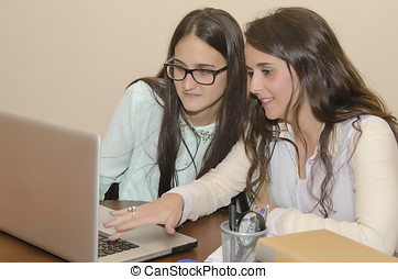 Two beautiful women using a computer - Young women using a...