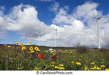 eolic generator in a wind farm